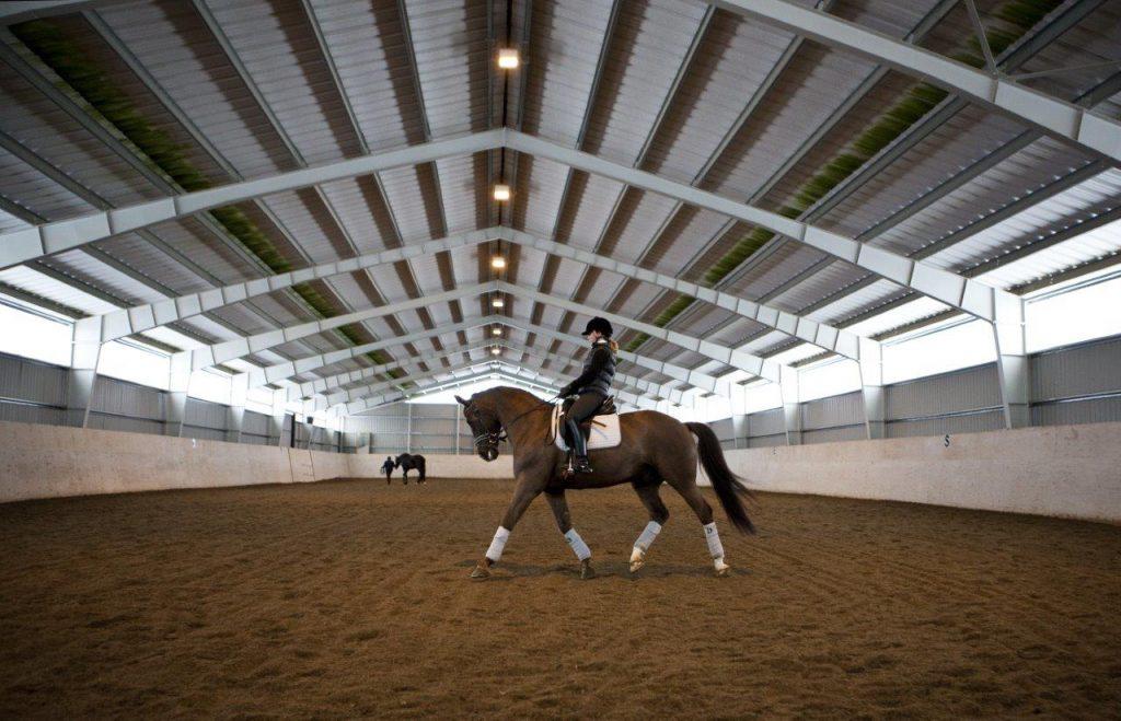 hale ujeżdżalnie dla koni